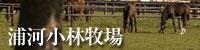 浦河小林牧場